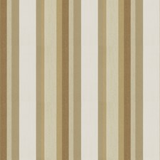 Latte Stripes Decorator Fabric by Fabricut