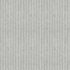 Platinum Print Pattern Decorator Fabric by Fabricut
