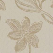 Alabaster Decorator Fabric by Robert Allen