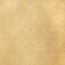 Cashew Paisley Decorator Fabric by Stroheim