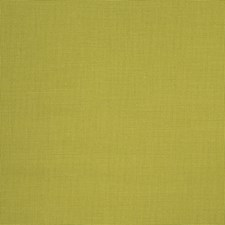 Palm Solid Decorator Fabric by Stroheim
