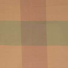Petal Check Decorator Fabric by Trend