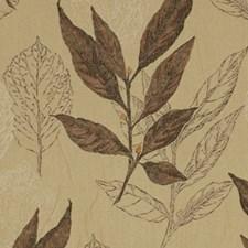 Chocolat Decorator Fabric by Robert Allen/Duralee