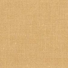 Biskut Decorator Fabric by Robert Allen