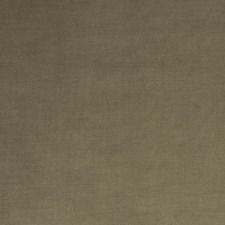 Walnut Solid Decorator Fabric by Trend