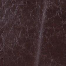 Fondant Decorator Fabric by Robert Allen