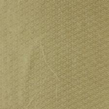 Lightening Decorator Fabric by Robert Allen