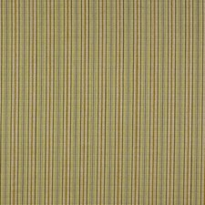 Boxwood Decorator Fabric by Robert Allen