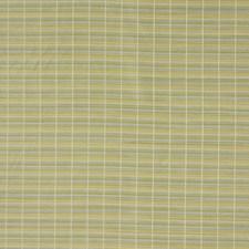 Botanical Decorator Fabric by Robert Allen /Duralee