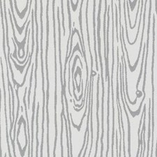 Dove Moire Decorator Fabric by Duralee