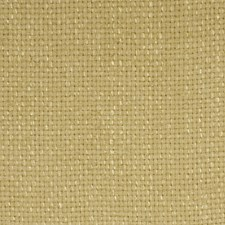Lemongrass Decorator Fabric by Robert Allen