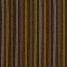Molasses Decorator Fabric by Robert Allen