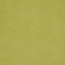 Key Lime Decorator Fabric by Robert Allen