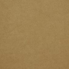 Sahara Decorator Fabric by Robert Allen