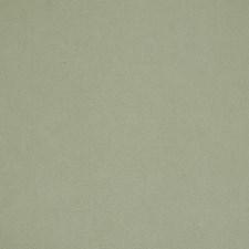 Cucumber Cream Decorator Fabric by Robert Allen