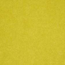 Margarita Decorator Fabric by Robert Allen