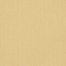 Butternut Decorator Fabric by Robert Allen