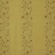 Honey Decorator Fabric by Robert Allen /Duralee