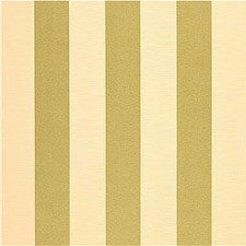 Stripes Decorator Fabric by Kravet