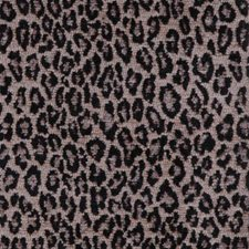 Poppy Seed Decorator Fabric by Highland Court