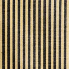 Iron Grey/Beige Decorator Fabric by Scalamandre