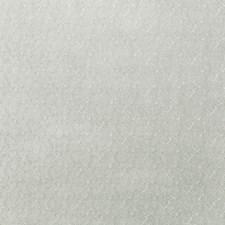 Fern Scrollwork Decorator Fabric by Fabricut