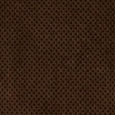 Eggplant Decorator Fabric by Robert Allen /Duralee