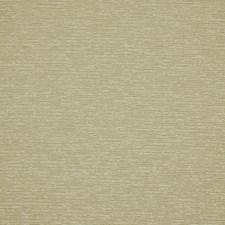 Frost Decorator Fabric by Robert Allen