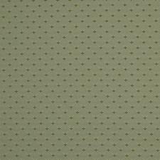 Pool Decorator Fabric by Robert Allen