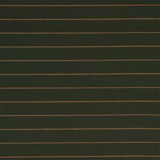 Forest Solid W Decorator Fabric by Groundworks