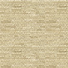 Sand Texture Decorator Fabric by Lee Jofa