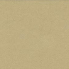 Celadon Solids Decorator Fabric by Lee Jofa