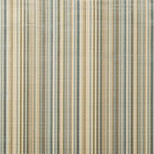Mineral Stripes Decorator Fabric by Lee Jofa