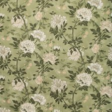 Meadow Botanical Decorator Fabric by Lee Jofa