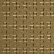 Amber Decorator Fabric by Robert Allen