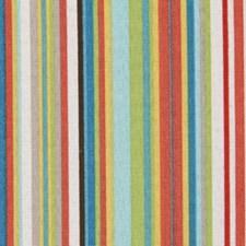 Multi Decorator Fabric by Robert Allen