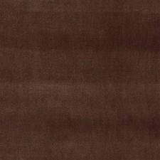Brown Velvet Decorator Fabric by Kravet