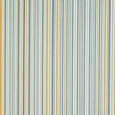 Rain Decorator Fabric by Robert Allen