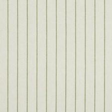 Spring Grass Decorator Fabric by Robert Allen/Duralee
