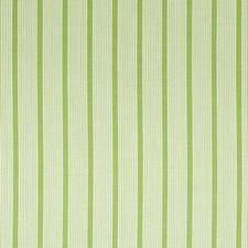 Spring Grass Decorator Fabric by Robert Allen /Duralee