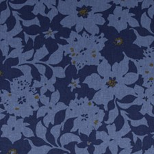 Calypso Decorator Fabric by Robert Allen