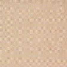 Palomino Solid W Decorator Fabric by Kravet