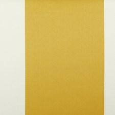 270426 15429 268 Canary by Robert Allen