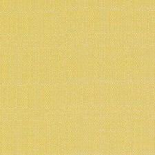 271748 DW16052 632 Sunflower by Robert Allen