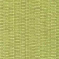 275765 DW16172 213 Lime by Robert Allen