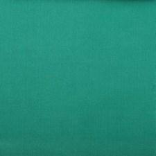 284197 32653 250 Sea Green by Robert Allen