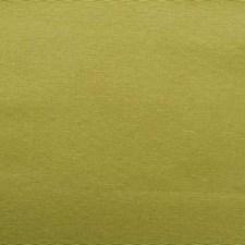 284545 32656 554 Kiwi by Robert Allen