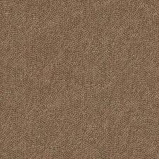 289621 32811 177 Chestnut by Robert Allen