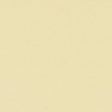 289801 32810 610 Buttercup by Robert Allen
