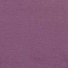 291143 32498 45 Lilac by Robert Allen